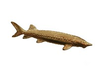 Sturgeon Gold Plated Pewter Pin